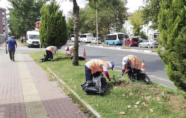 Büyükşehir'den Yeşil Alanlara Sonbahar Bakımı