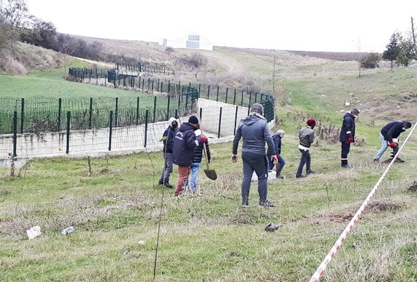 Çukuryurt'ta 220 adet çınar fidanı toprakla buluştu