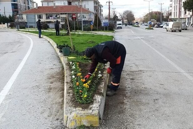 Saray Belediyesi, Mevsimlik Çiçek Ekimine Başladı